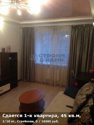 Сдается 1-к квартира, 45 кв.м, 2/10 эт., Стройкова, 0