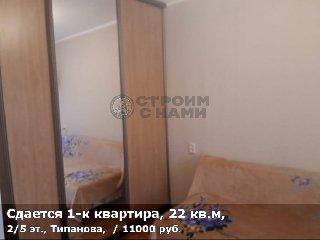 Сдается 1-к квартира, 22 кв.м, 2/5 эт., Типанова,
