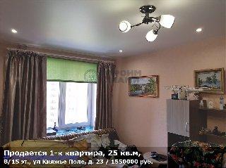 Продается 1-к квартира, 25 кв.м, 8/15 эт., ул Княжье Поле, д. 23