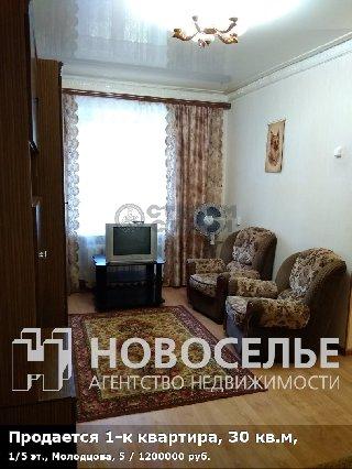 Продается 1-к квартира, 30 кв.м, 1/5 эт., Молодцова, 5