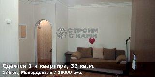 Сдается 1-к квартира, 33 кв.м, 1/5 эт., Молодцова, 5