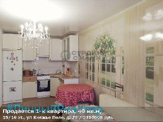 Продается 1-к квартира, 40 кв.м, 15/16 эт., ул Княжье Поле, д. 23