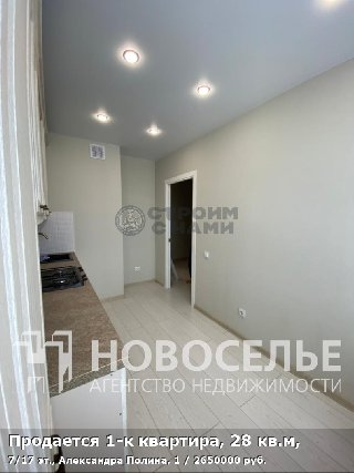 Продается 1-к квартира, 28 кв.м, 7/17 эт., Александра Полина, 1