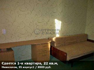 Сдается 1-к квартира, 22 кв.м, Новоселов, 35 корпус1
