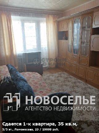 Сдается 1-к квартира, 35 кв.м, 5/5 эт., Ломоносова, 23