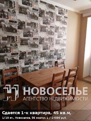 Сдается 1-к квартира, 45 кв.м, 1/10 эт., Новоселов, 56 корпус 1