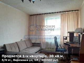 Продается 1-к квартира, 30 кв.м, 5/9 эт., Березовая ул, 1Л