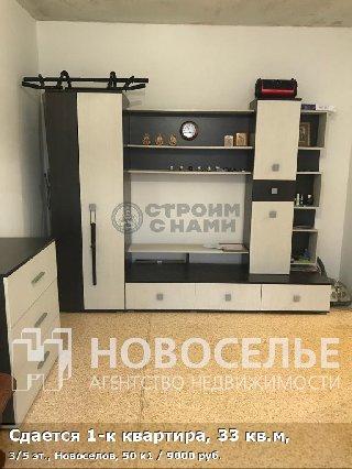 Сдается 1-к квартира, 33 кв.м, 3/5 эт., Новоселов, 50 к1